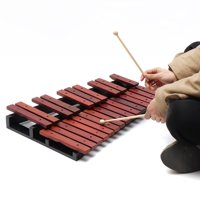 25 Sound Key Wooden Xylophone Mallets Board Stand Musical Percussion Instruments