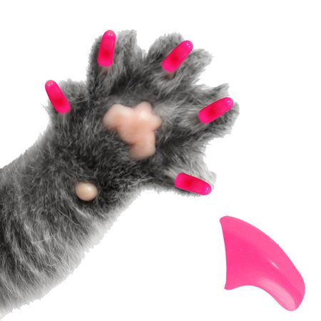60 Pack Bubblegum Pink Soft Nail Caps for Cats Pretty Claws - Medium](Pretty Cat Makeup For Halloween)