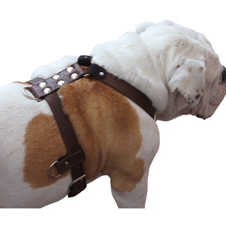 "Genuine Leather Dog Harness Medium to Large 25""-32"" Chest, 1"" Wide Adjustable Straps (Brown)"