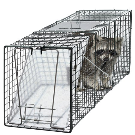 - Oxgord Humane Pest and Rodent Control Live Animal Trap