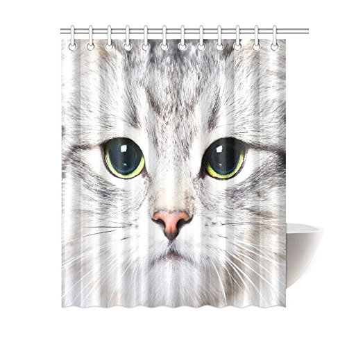 GCKG Funny Animal Cat Kitten Shower Curtain Hooks 60x72 Inches White Fabric KittenClose Up With Big Green Eyes Fur