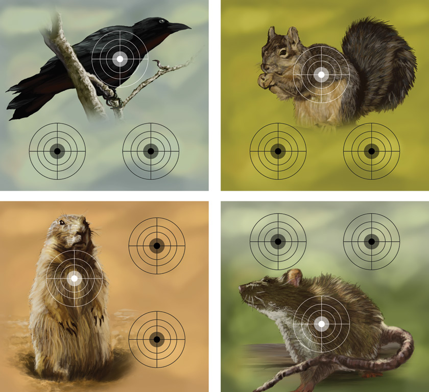 "Crosman Varmint 9.75"" x 9.0"" Shooting Targets, 20 count"