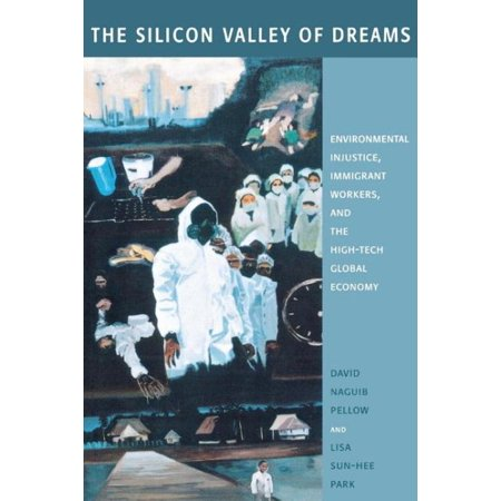 The Silicon Valley Of Dreams
