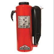Badger 28.5 lb. Capacity, Fire Extinguisher, Dry Chemical, B-30-PK