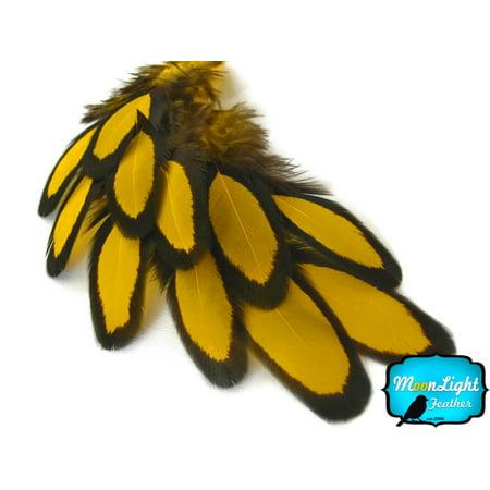 1 Dozen - Yellow Laced Hen Saddle Feather