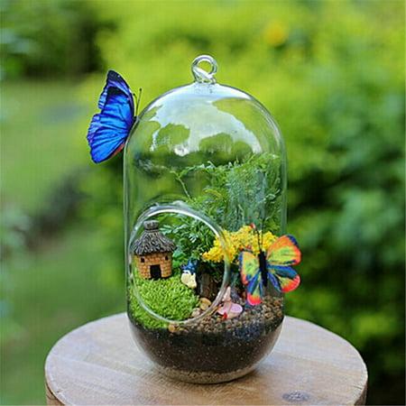 Wall Hanging Hydroponic Plant Glass Pot Bubble Pet Fish Aquarium GoldFish Glass Vase Tank Succulent Plants Planter Home Decor for Watering Flowers or Desk decoration ()
