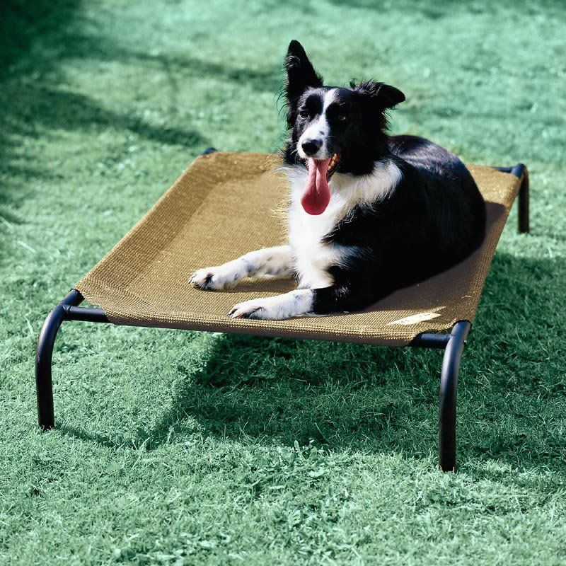 Coolaroo Elevated Pet Bed - Desert Sand