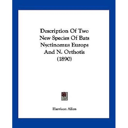 (Description of Two New Species of Bats Nyctinomus Europs and N. Orthotis (1890))