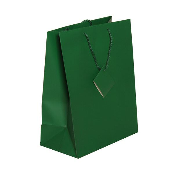 JAM Gift Bags - Large - 10 x 13 x 5 - Green Matte - 100/pack