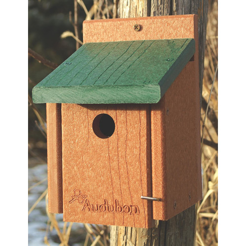 Audubon/Woodlink Go 8 in x 5.5 in x 6 in Bluebird House