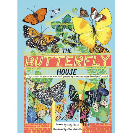 Butterfly Face Paint Step By Step (The Butterfly House : Step inside to discover over 100 species of nature's most beautiful)
