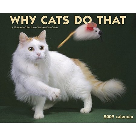 Why Cats Do That Calendar: A 12-Month Collection of Curious Kitty Quirks