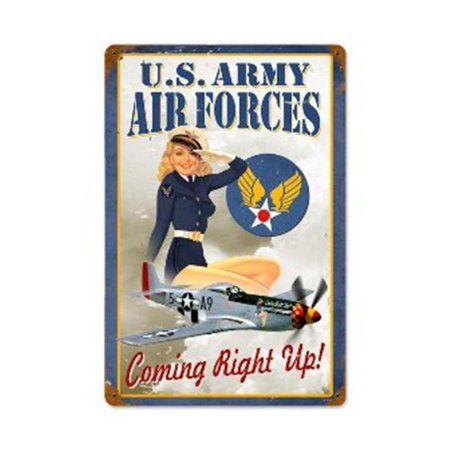 Past Time Signs V552 Air Forces Pin Up Allied Military Vintage Metal