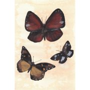 Mai Autumn Butterfly Study No.2 by Christine Lindstrom Framed Painting Print