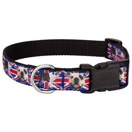 Bulldog Nock Collar (Country Brook Design® Deluxe English Bulldog Union Jack Ribbon Dog Collar)