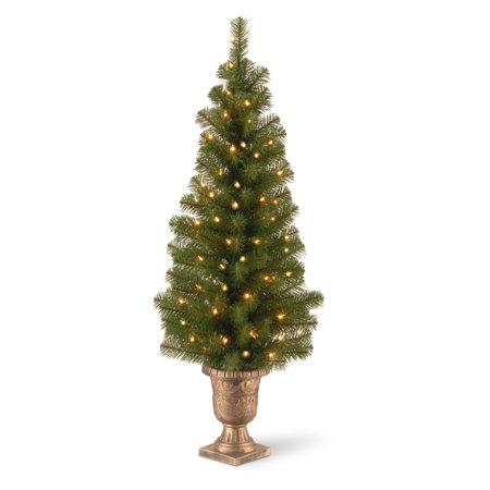 4 ft. Montclari Spruce Entrance Pre-Lit Black and Gold Potted Christmas