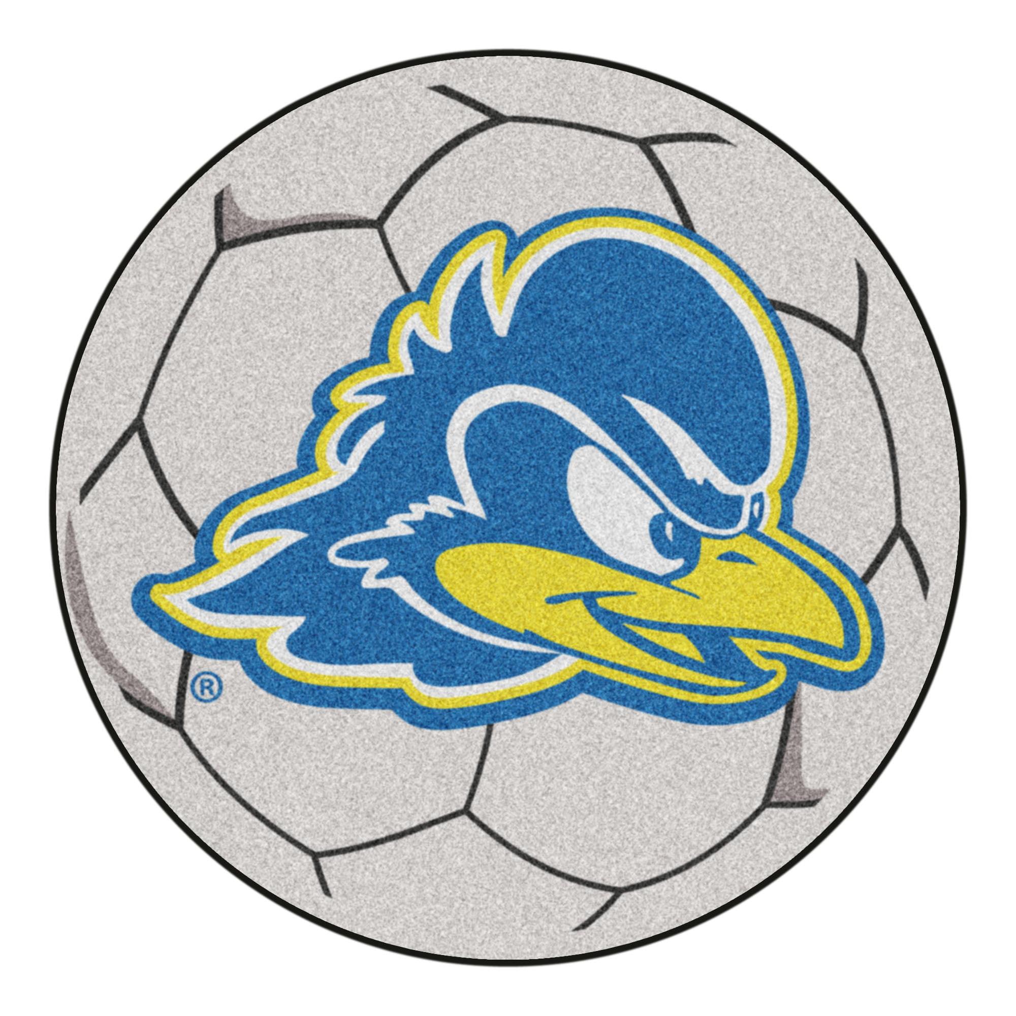 """Delaware Soccer Ball 27"""" diameter"""
