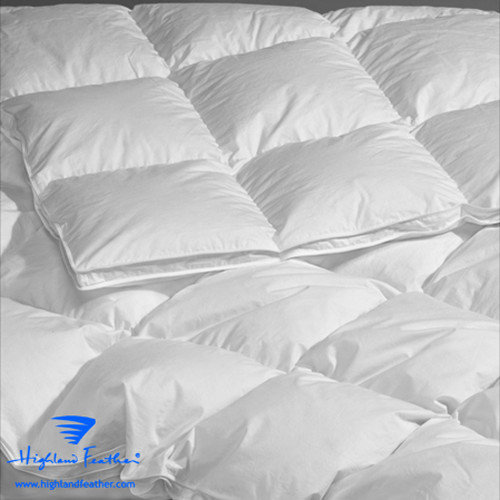 Highland Feather Le Mans Down Comforter