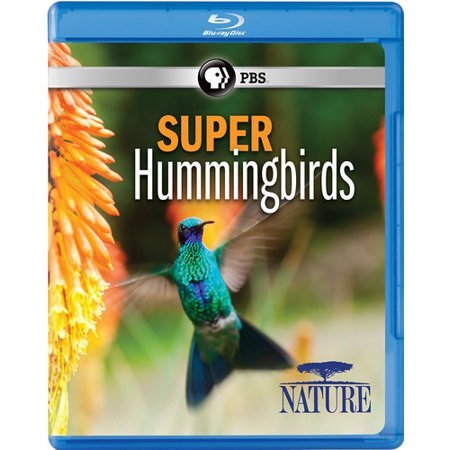 Nature: Super Hummingbirds (Blu-ray)