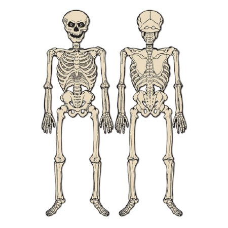 Club Pack of 12 Spooky Jointed Skeleton Halloween Decorations 4.25' for $<!---->
