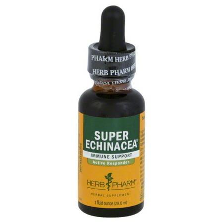 Herb Pharm Herb Pharm  Super Echinacea, 1 - Echinacea Herb
