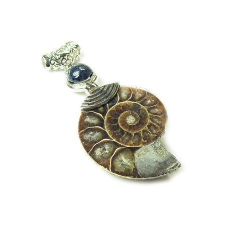 30x60mm Ammonite large pendant with lapis fashion jewelry