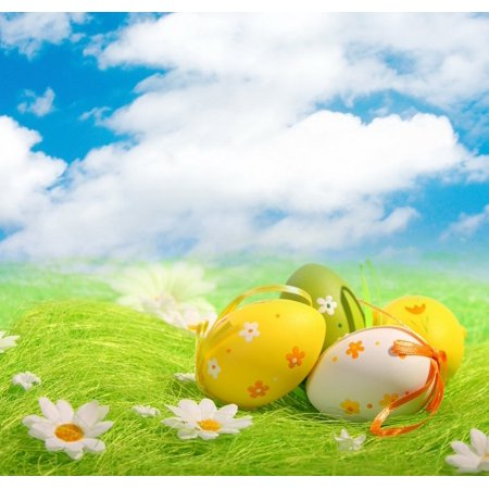 GreenDecor Polyster 7x5ft Easter Day Eggs in Grass Photography Backdrop Prop Photo Background