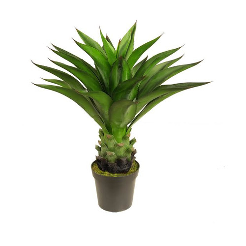 Northlight Seasonal Decorative Artificial Agave Americana Succulent Desk Top Plant in Pot
