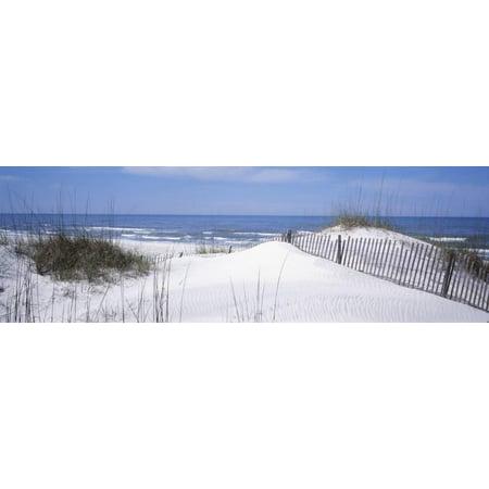 Fence on the Beach, Gulf of Mexico, St. Joseph Peninsula State Park, Florida, USA Print Wall Art