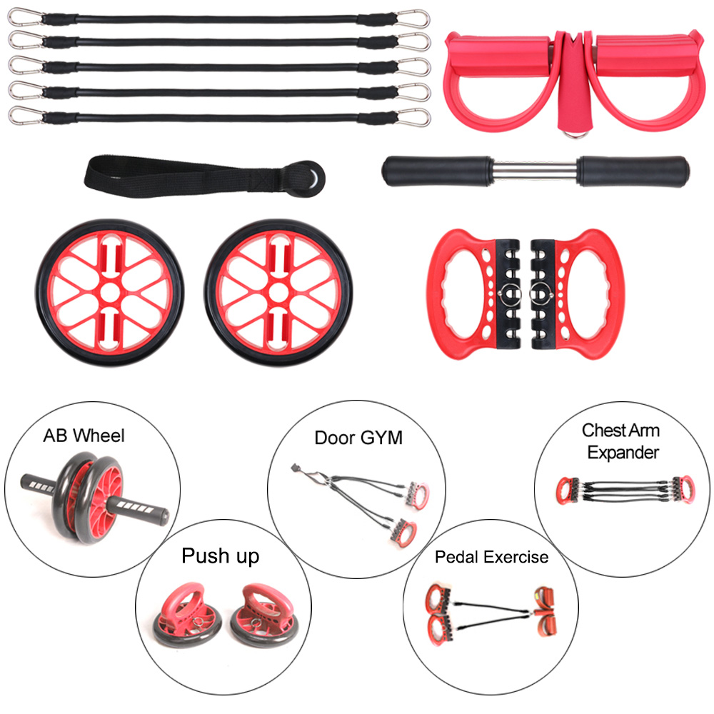 5 In 1 Portable Home Gym Equipment With Door Anchor System ab roller, Resistance belts system, Push Up Stand, Chest... by