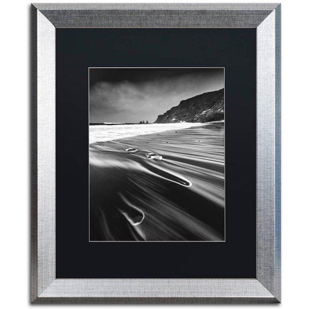 Trademark Fine Art Veins Of The Sea Canvas Art By Mathieu Rivrin Black Matte Silver Frame Walmart Com Walmart Com
