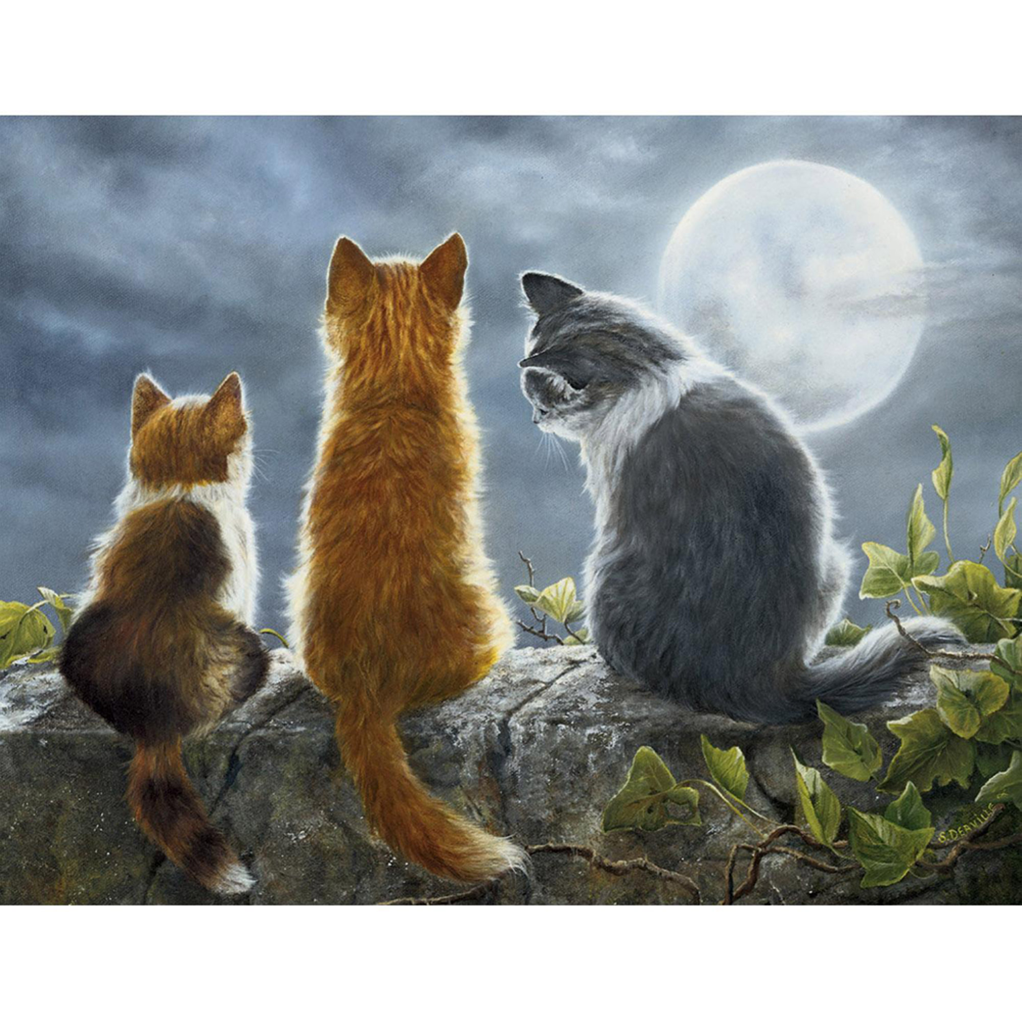 Lang Cat Whisperers Boxed Note Cards