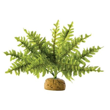 Exo-Terra Plant Small, Boston Fern