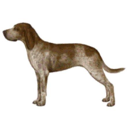 American English Coonhound Dog Counted Cross Stitch - Halloween Cross Stitch Patterns Online