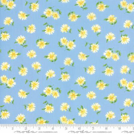 Summer Breeze V ~Daisies Light Blue - Cotton Fabric by