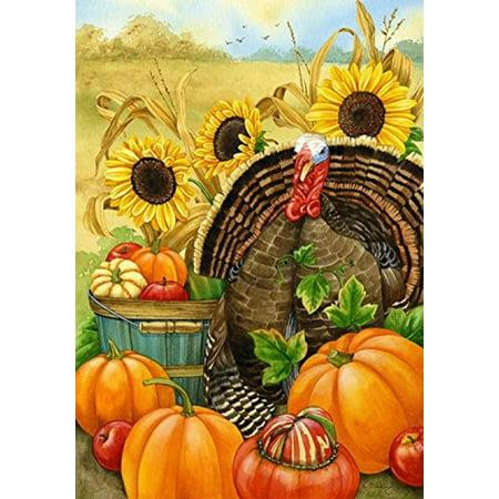 Toland - Happy Halloween with Hello Turkey and Santa Joy - 3 Items Bundled by Maven Gifts - Santa Mira Halloween 3