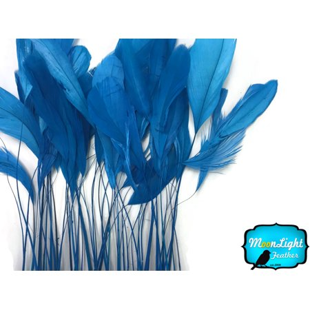 (1 Yard - Turquoise Blue Stripped Coque Tail Feathers Wholesale (Bulk))