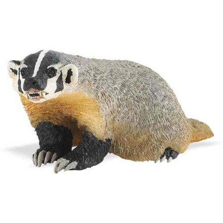 Safari Ltd Wild Safari North American Wildlife - American Badger - Realistic Hand Painted Toy Figurine Model - Quality Construction From Safe And BPA Free Materials - For Ages 3 And Up