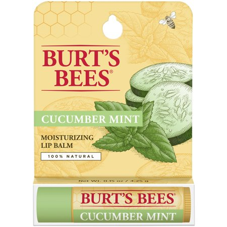 (2 Pack) Burt's Bees 100% Natural Moisturizing Lip Balm, Cucumber Mint with Beeswax - 1