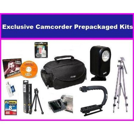 Enthusiast Accessory kit For Panasonic HDC-HS250 HDC-TM15K HS300 HS700K TM700K SDR-H80 kit with 8GB Hi Speed SD Memory Card, Portable Video Light, X Grip, Pro Tripod, Deluxe Carrying Case & More - Hi Performance Video