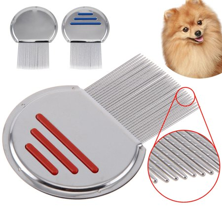 Lice Nit Comb Get Down To Nitty Gritty Stainless Pet Steel Metal Head And (Best Pet Monkey To Get)
