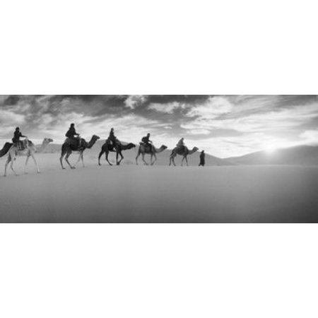 Tourists riding camels through the Sahara Desert landscape led by a Berber man Morocco Canvas Art - Panoramic Images (15 x 6)