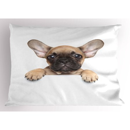 Bulldog Pillow Sham Pedigreed Young Puppy Close-up Photo Best Friend Pet Lover Print, Decorative Standard Size Printed Pillowcase, 26 X 20 Inches, Sand Brown Black and White, by