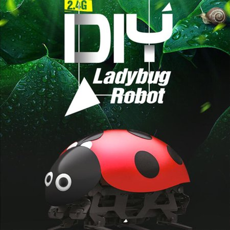 Virhuck F10 DIY Toys Intelligent RC Ladybug Robot RC Cars Bionic Insect Toy for Kids With 2.4Ghz wirless Remote Control Electronic Car