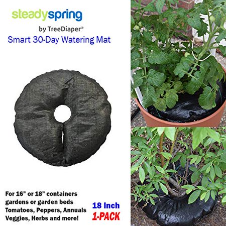 SteadySpring by TreeDiaper Smart 30-Day Watering Mat for Tomato Plants, Peppers, Veggies, Perennials, Annuals - Self-Fills with Rain (1)