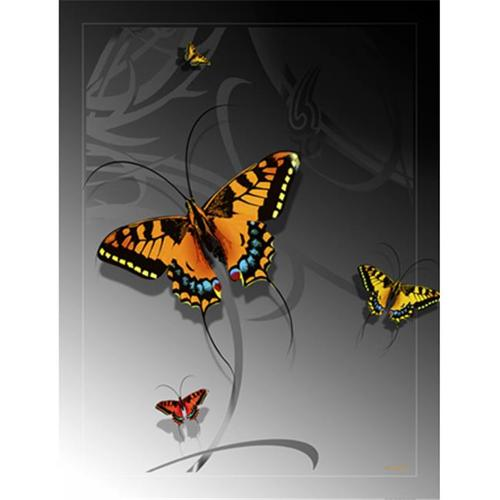 Lama Kasso 0210-T Large Butterfly on a Silver Transitioning to Black Background 48 in. x63 in. Satin Throw