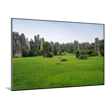 Natural Landscape of China - Stone Forest National Park Wood Mounted Print Wall Art By wusuowei