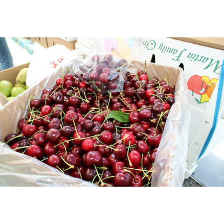 India Sweet Fruit - LAMINATED POSTER Fresh Food Cherries Healthy Fruit Red Sweet Poster Print 24 x 36