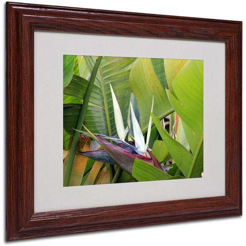"Trademark Fine Art ""Paradise 2"" Matted Framed Art by Patty Tuggle, Wood Frame"