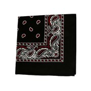 12 Pack Daily Basic 100% Cotton 22 x 22 in Paisley Printed Bandana